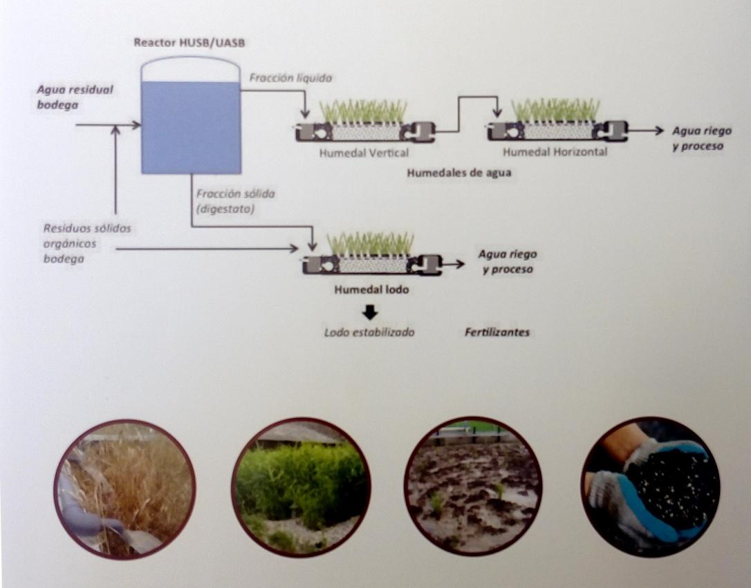 Sistemas de tratamiento de aguas residuales mediante humedales